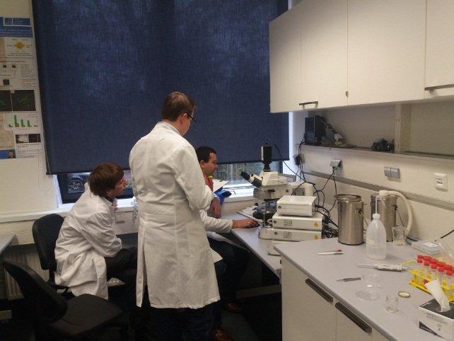 ХНУРЭ участвует в современном научном проекте в Германии