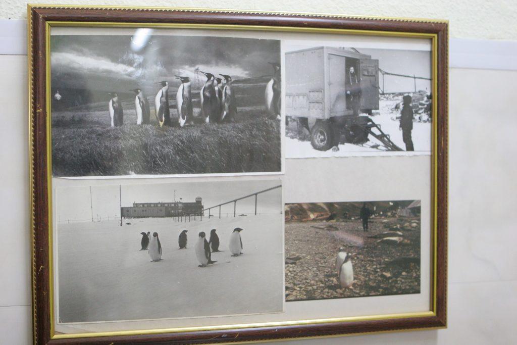 В Музее истории ХНУРЭ посвятили экспозицию кафедре РТИКС