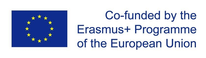 National monitoring of Erasmus + project