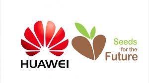 Huawei объявляет конкурсный отбор для участия во всемирной онлайн-программе «Семена для будущего 2020» (Seeds for the Future Sky Program 2020)