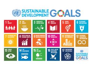 Sustainable Development Goals (SDGs). The objectives of NURE to implement the SDGs.